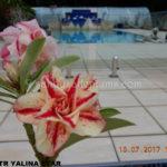 5144 TRIPLE YALINA STAR-2